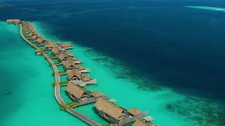 Waldorf Astoria Maldives Ithaafushi | Shades of Blue (Overwater Villas)