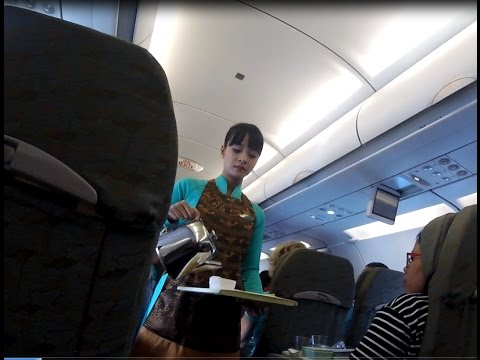 Vietnam Airlines Economy Airbus 321 Singapore to Hanoi Flight Review VN660