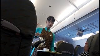Vietnam Airlines Economy Airbus 321 Singapore to Hanoi Flight Review VN660