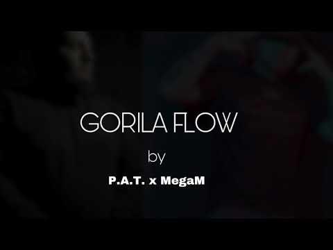 P.A.T. x MegaM - Gorila flow (prod.P.A.T.)|Official audio|