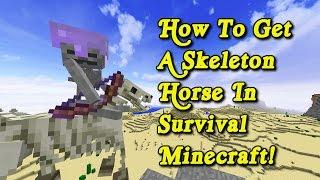 Minecraft Tutorial - H๐w To Get A Skeleton Horse In Survival Minecraft!
