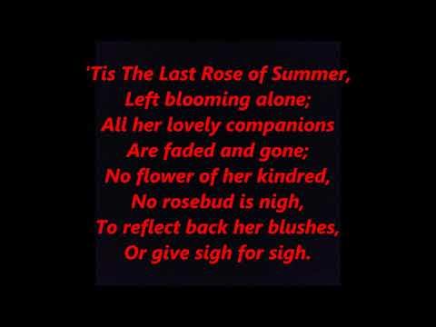The Last Rose of Summer Irish poet poem Thomas Moore LYRICS WORDS BEST TOP POPULAR  SING ALONG SONGS