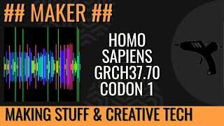 Homo_sapiens.GRCh37.67.dna.chromosome.1 Codons - Charles Gershom