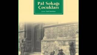 Pal Sokağı Çocukları - Sesli Kitap (Özet)