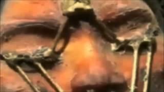 Миссия Аполлон-20, корабль пришельцев, мёртвая инопланетянка.