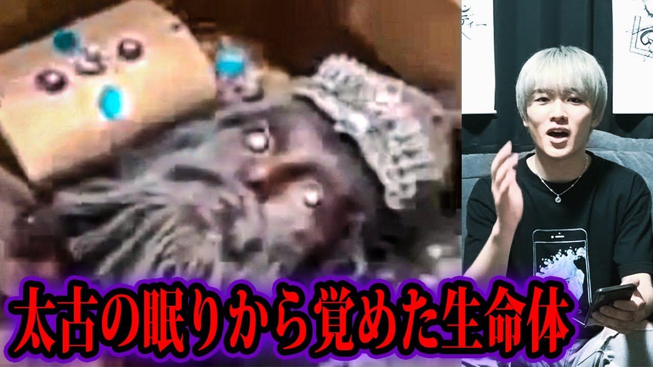 アヌンナキ の 冷凍 保存 アヌンナキの冷凍保存が発見される!!【都市伝説】