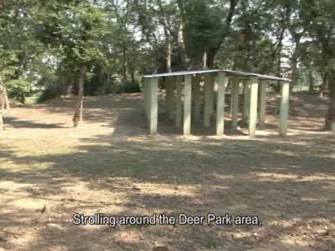 Về Thăm Đất Phật Tập 36 - Phim Ký Sự Phật Giáo tại Ấn Độ
