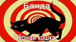 Черная кошка ! Правдивая история!