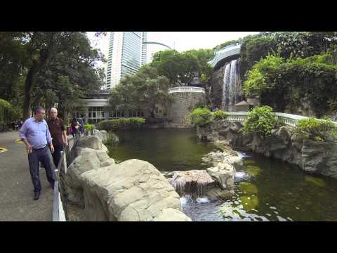 Waterfall in Hong Kong park | Hong Kong Tourism