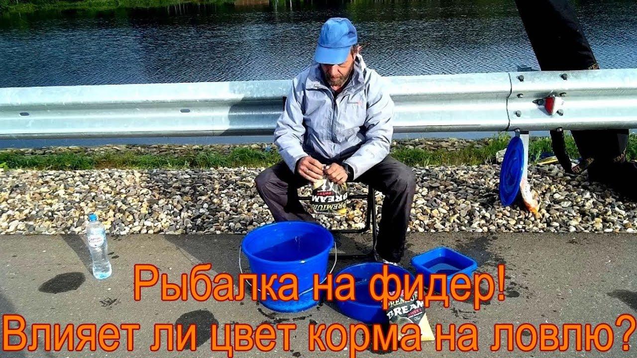 советы начинающему рыболову на фидер