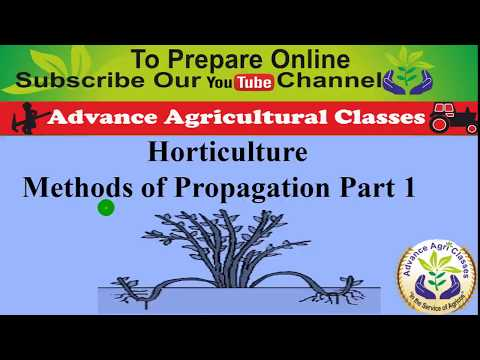 Horticulture Methods of Propagation Part 1 (Hindi/English) IBPS AFO