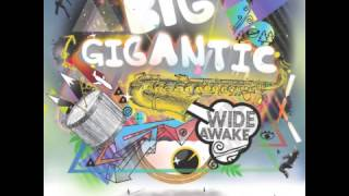 Big Gigantic - High Life