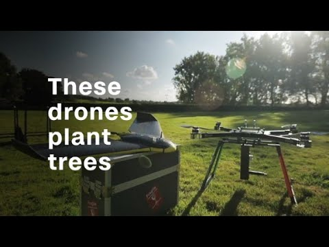 Download Youtube: Tree-planting drones hope to fight deforestation