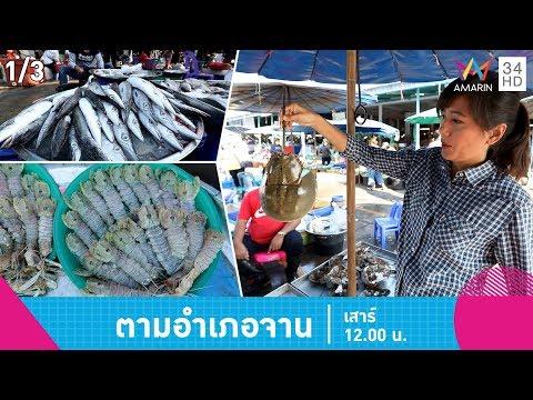 ต้องลอง! เมนูเด็ดเมืองเพชร 'แกงเผ็ดลูกชิ้นปลาสาก' - วันที่ 09 Feb 2019