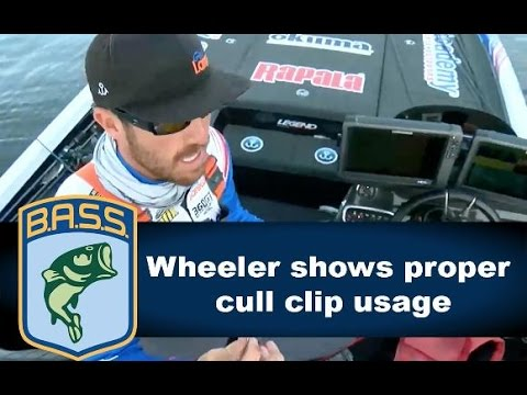 Jacob Wheeler on where to place a penetrating cull clip