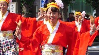 【ひらり】坂戸・夏よさこい #8 2018/8/18 よさこい祭り