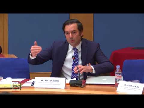 """Sénat Audition - Nouveaux usages et régulation des chaînes de blocs """"blockchain"""""""