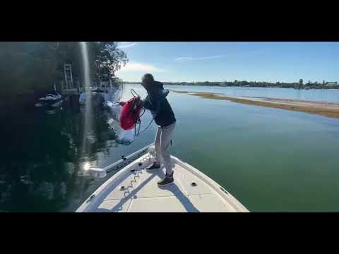 Catching HUGE Triple Tail Off The Beach Of Anna Maria Island In Florida!!!