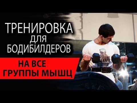 Тренировка для бодибилдеров на все группы мышц