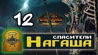 Цари Гробниц прохождение Total War Warhammer 2 за Архана Черного - #12