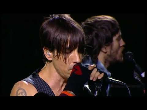 Red Hot Chili Peppers - This Velvet Glove (Live Chorzów 2007)