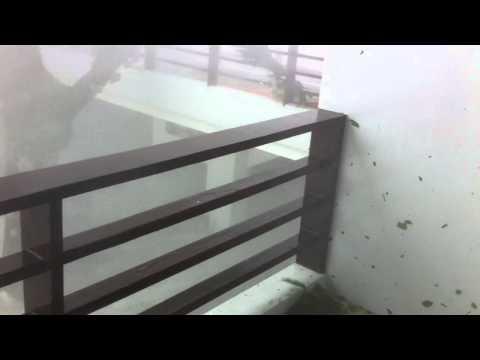 """Typhoon Yolanda(Haiyan) strikes """"The Oriental Leyte"""" (08NOV2013)"""