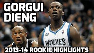 Gorgui Dieng 2013-14 NBA Rookie Year Highlights