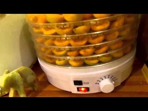 Сушилка для фруктов, потребление электроэнергии.