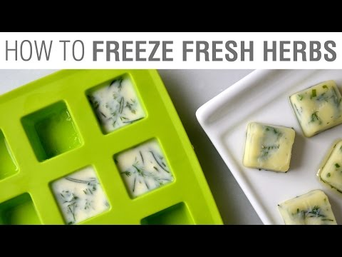 Kitchen Hack: Freeze Fresh Herbs in Olive Oil