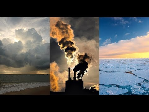 Which Policies Would Actually Curb Climate Change?