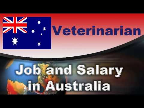 Veterinarian Salary In Australia - Jobs And Wages In Australia