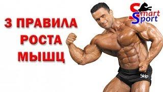 большие мышцы видео