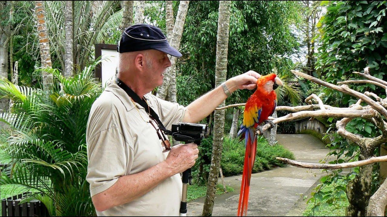 Bali Indonesie 02 Sanur 2 Bali Bird Park Reptile Park Fox