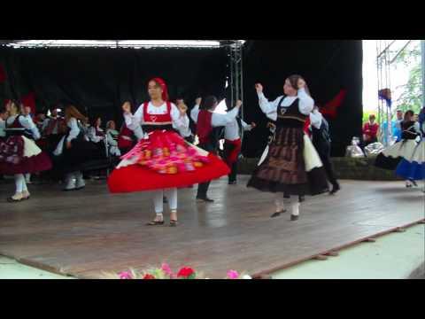 vira de Gondoriz festival st Flo 2016