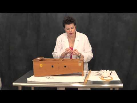 Instrument Repair Hospital: Replacing Nails and Tubing