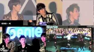 [FANCAMS] Girl Who Impressed EXO-K (Genie AR Show)