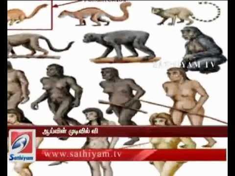 Anilil Irunthu Manithan Vanthanaa?-Sathiyam Tv News