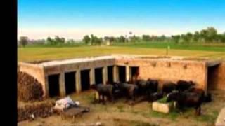 Babul De vehre (Harbhajan Maan)