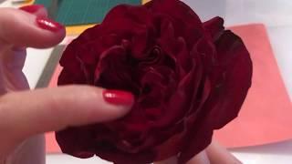 1. Реалистичная роза из фоамирана. Часть1 Изучение строения цветка, создание шаблона.