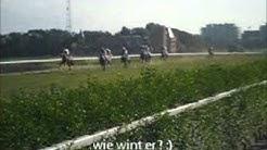 paardenkoers oostende x)
