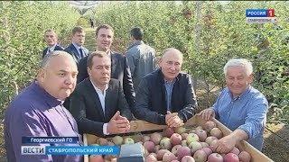 Президент Владимир Путин о развитии сельского хозяйства после 2021 года