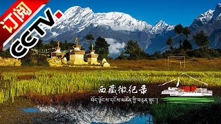 [Tibet Short Documentaries] New Life in Gyirong Valley | CCTV