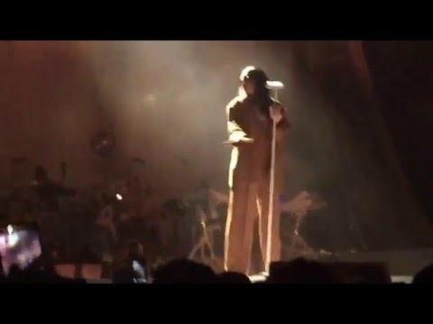 Needed Me (live in Tampa) Rihanna Anti World Tour