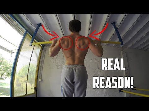 Can't Progress With Pull-ups? (REAL REASON WHY!)
