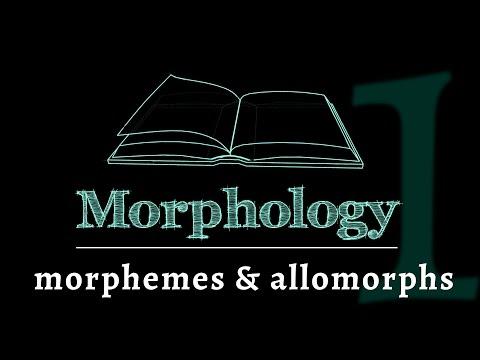 Grammar of Words: Morphemes & Allomorphs (Lesson 1 of 7)