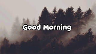 Matt Maltese  Good Morning (Lyrics)