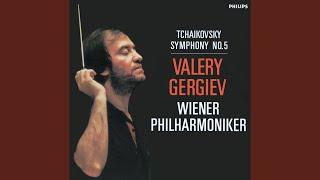 Tchaikovsky: Symphony No.5 In E Minor, Op.64, TH.29 - 1. Andante - Allegro con anima