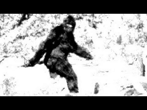 10 Reasons Bigfoot Probably Doesn't Exist