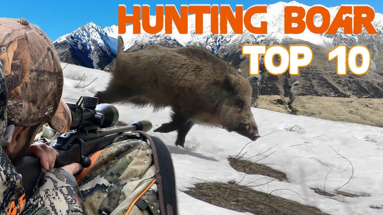 TOP 10 Wild Boar Hunting in Tadjikistan / 2021