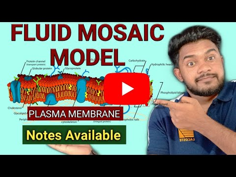 Fluid mosaic model, plasma membrane, cell the unit of life , Neet lectures, latest videos, chalktalk